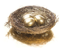 Most 401(k) Plans Survived the Recession Intact