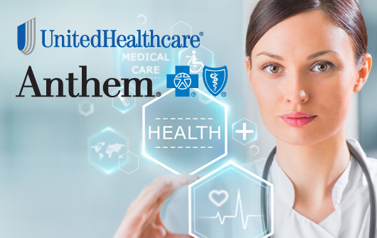 UnitedHealth and Anthem Look to Purchase Smaller Carriers