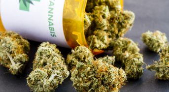 "<a name=""healthcare""></a>Medical Marijuana Reduces Medicare Part D Drugs Costs"