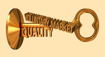 Key Voluntary Market Trends and Tactics